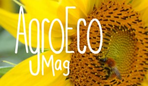 agro_eco_mag_2015